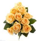 Roos-Peach-Avalanche-Small-(10-stuks)(Roos-Peach-Avalanche-Small-(10-stuks))